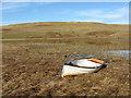 NT3415 : Clearburn Loch : Week 6