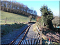 SN6778 : The Vale of Rheidol Railway by John Lucas