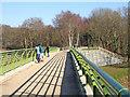 SO7483 : Severn Valley Country Park - view on footbridge : Week 8