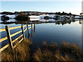 NS3668 : Fence, Knapps Loch by wfmillar