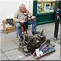 ST7464 : Street Musician, Burton Street, Bath by Brian Robert Marshall: Week 9