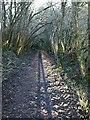 SX2685 : Footpath near Badharlick by Derek Harper