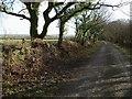 SX2586 : Lane on Tregeare Down by Derek Harper