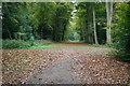 SU9184 : Cliveden Green Drive by Shaun Ferguson