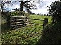 SX2687 : Gate near Trebeath by Derek Harper