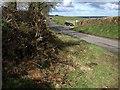 SX2687 : Road past Trebeath by Derek Harper