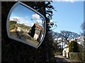 SX2290 : Traffic mirror at Trebreak Lane End by Derek Harper