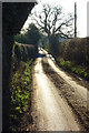 SU7588 : Lane, Hambleden by Andrew Smith