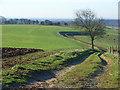 SU7487 : Footpath and farmland, Fawley by Andrew Smith
