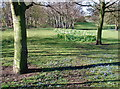 TA0733 : Princess Elizabeth Playing Fields by Paul Glazzard