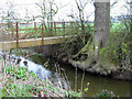 SJ3304 : Footbridge over Rea Brook by Dave Croker
