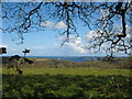 SW7730 : View across fields towards Falmouth Bay from the drive to Penwarne House by Rod Allday