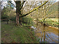 NN1902 : River Goil by wfmillar