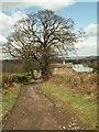 SE2804 : Low Coates Farm buildings on Blackergreen Lane by John Fielding