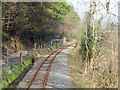 SN6578 : Vale of Rheidol Railway at Tan-yr-allt by John Lucas