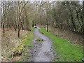 SU9196 : Footpath into Penn Wood by Shaun Ferguson