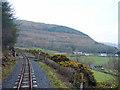 SN6979 : Vale of Rheidol Railway beneath Cnwch yr Arian by John Lucas