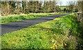 J4774 : Path, Kiltonga, Newtownards by Albert Bridge