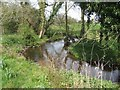 SJ7038 : River Tern upstream of the new Norton in Hales bridge by John M