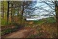 SE2900 : Evening light on a gate into Farmland by Steve  Fareham