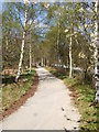 NO4197 : Old Deeside Railway route to Ballater by Stanley Howe