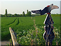SU5093 : Farmland and cycle network signpost, Sutton Courtenay by Andrew Smith