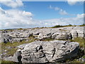 R3194 : Burren National Park, Weathered Limestone by Adrian King