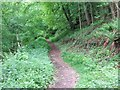 SU7591 : Path through the woods by Bryan Pready
