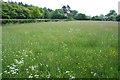 SJ5350 : Meadow near Moss Wood by Espresso Addict