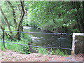 SX2283 : River Inny from Laneast bridge by Rod Allday