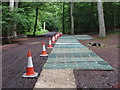 SU9484 : Temporary walkway for filming &quot;Merlin&quot;, Burnham Beeches by David Hawgood