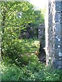 NR7384 : Waterfall and leat, Taynish Mill ruin by E Gammie