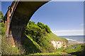 NZ4446 : Hawthorn Dene by Craig Allan