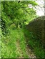 SE0942 : Bury Lane - Carr Lane, East Morton by Betty Longbottom