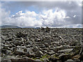 SH6968 : The rocky summit of Foel-fras : Week 22
