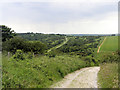 TQ5401 : Foredown Hill, Lullington Heath, near Jevington, East Sussex by Kevin Gordon