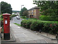 TQ4871 : Ellenborough Road by Mike Quinn