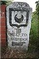 TL4352 : One of the Trinity Hall milestones, near Hauxton by Duncan Grey