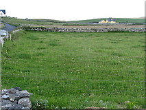 R0897 : Fields separated by drystone walls and farmhouse beyond by C Michael Hogan