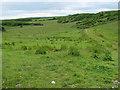 R2596 : Gently sloping Burren grassy valley by C Michael Hogan