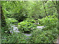 SK1452 : Dovedale - River Dove by Alan Heardman