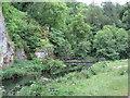 SK1453 : Dovedale - River Dove and Footbridge near Ilam Rock by Alan Heardman