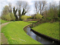 TQ4769 : River Cray by Dr Neil Clifton