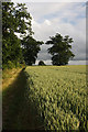 TL8063 : Parsonage Field, Little Saxham by Bob Jones