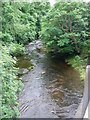 SN8112 : Afon Tawe from the Abercraf bypass bridge by Alan Bowring