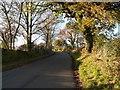 SE3001 : Hand Lane, Crane Moor by Wendy North
