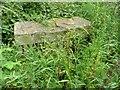 SE3002 : Thurgoland Parish Boundary Stone by Wendy North