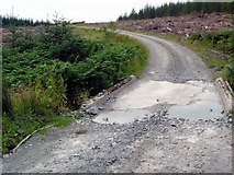 NX2886 : Bridge over the Shalloch Burn by Gordon Brown
