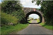 N3346 : Railway Bridge by kevin higgins