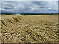 SK3198 : Flattened wheat field by Wendy North